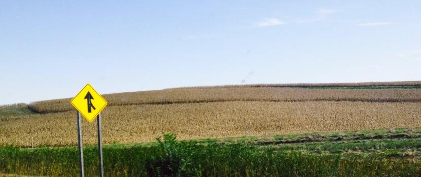 Iowa wordpress pic